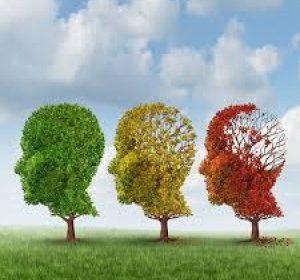 Diplomado en Personas mayores y demencia: abordaje gerontológico – Semi presencial