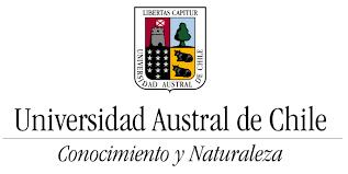 Diplomado Gestión y Calidad en Salud UAustral- Valdivia